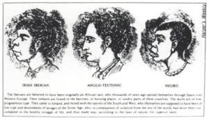 irish-anglo-negro